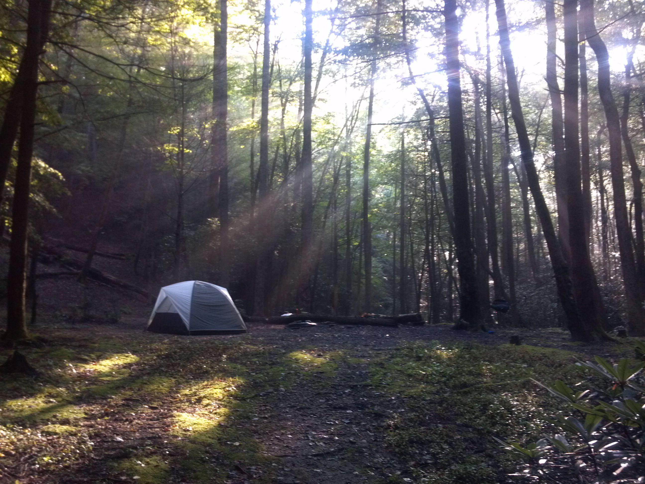 Beautiful State Park! Stone Mountain State Park   Roaring Gap, NC Primitive  Campsite A