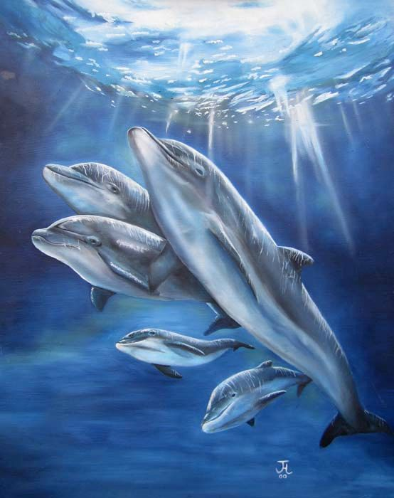 Dolphin Painting Inspiration (With Images) Dolphin Painting