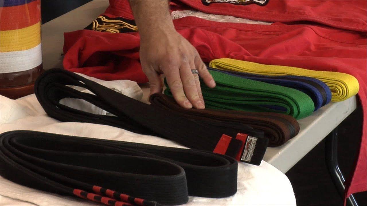 How many belts are in karate fred mergen brown belt