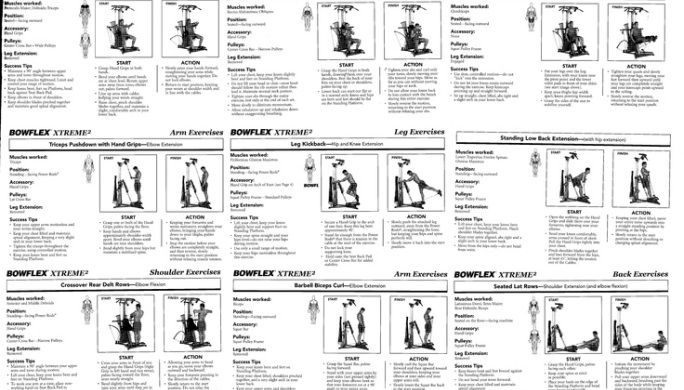 bowflex exercise chart keni ganamas co rh keni ganamas co Bowflex 6 Week Workout 20 Minute Bowflex Workout