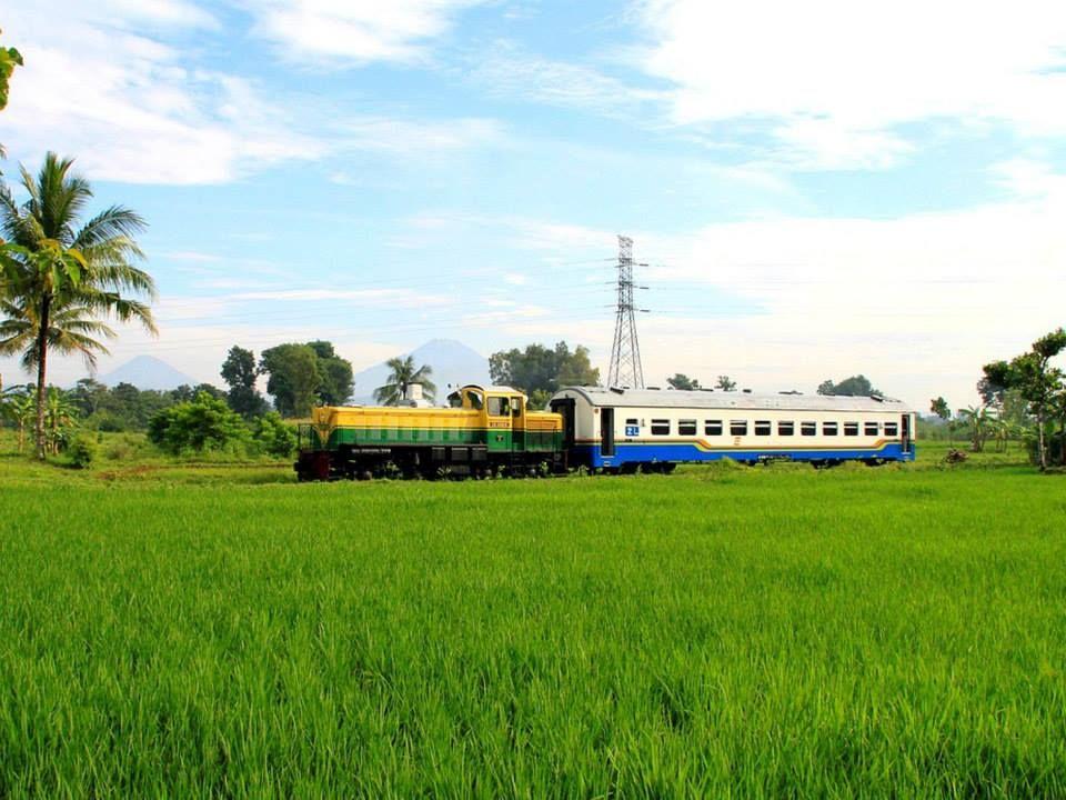 Kereta penumpang kelas bisnis (K2) tunggal yang sering digunakan dalam rangkaian KA Feeder Purworejo (sekarang sudah tidak beroperasi) yang mengantar penumpang ke Stasiun Kutoarjo dari Stasiun Purworejo pp.