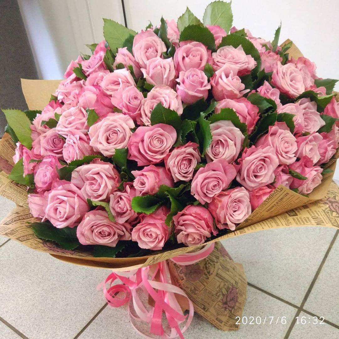 55 отметок «Нравится», 0 комментариев — ЦВЕТЫ/В КРАСНОДАРЕ/ОПТОМ (@flowers_shop_krasnodar) в Instagram: «101 роза 50 см 3500 р ▫️▫️▫️▫️▫️▫️▫️ Звоните заказывайте!  НАШИ АДРЕСА:  г. Краснодар, ул.…»