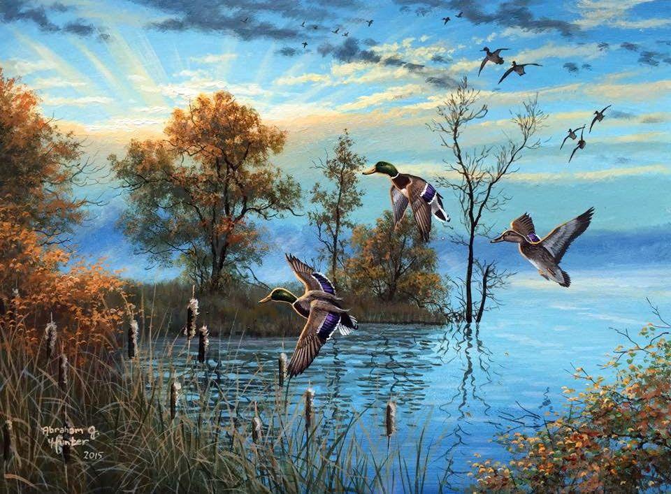 Мир птиц. Художник Abraham Hunter.. Обсуждение на ...