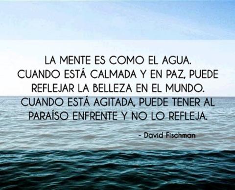 """""""La #Mente es como el agua, cuando está calmada y en paz, puede reflejar la belleza del mundo; cuando está agitada, puede tener al paraíso enfrente y no lo refleja."""" #DavidFischman #Citas #Frases #Candidman"""