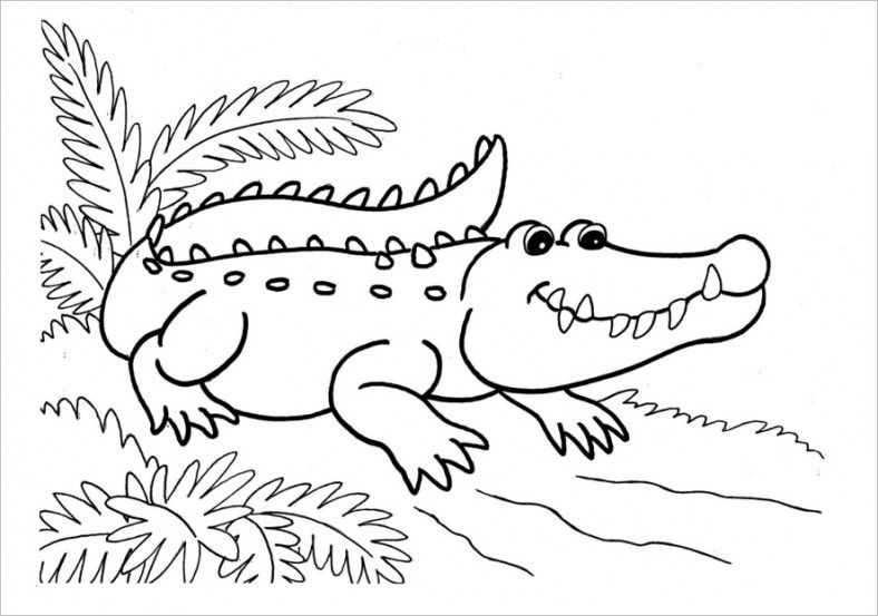 14 Alligator Templates Crafts Colouring Pages Coloring Pages