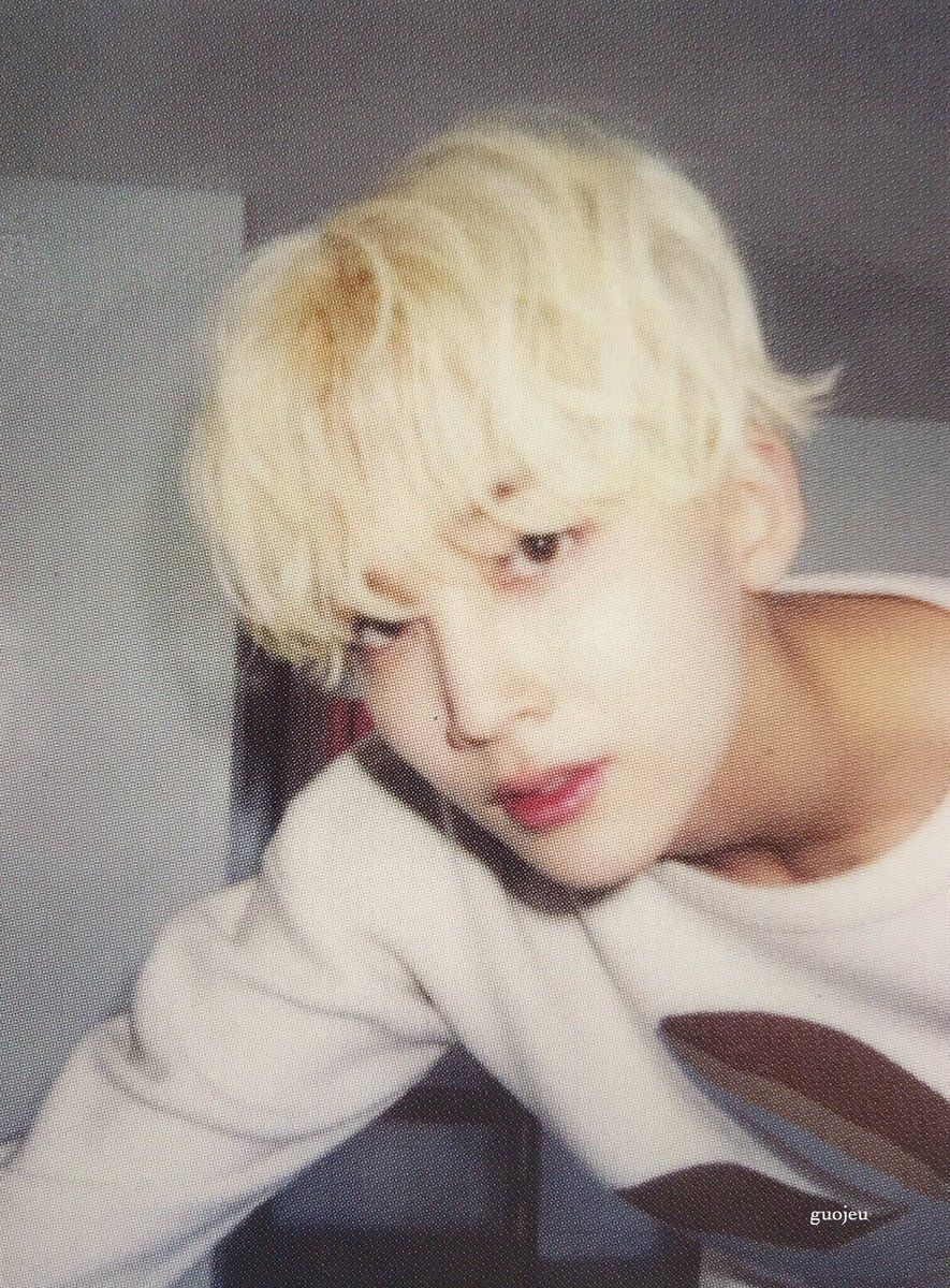 guojeu / jeonghan photocards