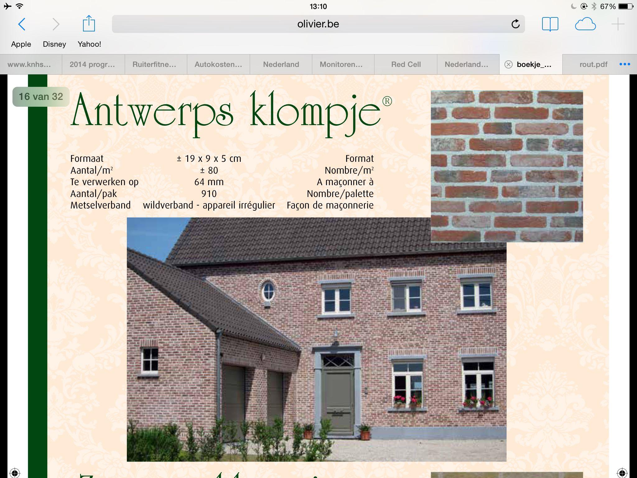 Antwerps Klompje Antwerpen Nieuwbouw Disney