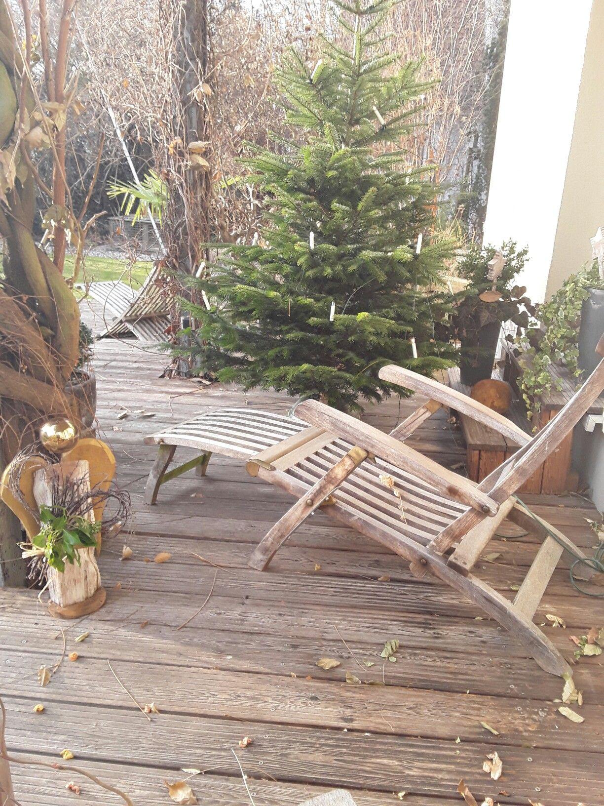 Der Weihnachtsbaum steht in der Adventszeit schon auf der Terrasse ...