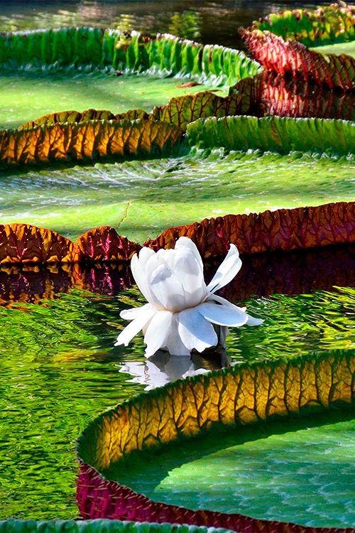 World S Top 5 Ecotourism Destinations Ecotourism Explore Nature