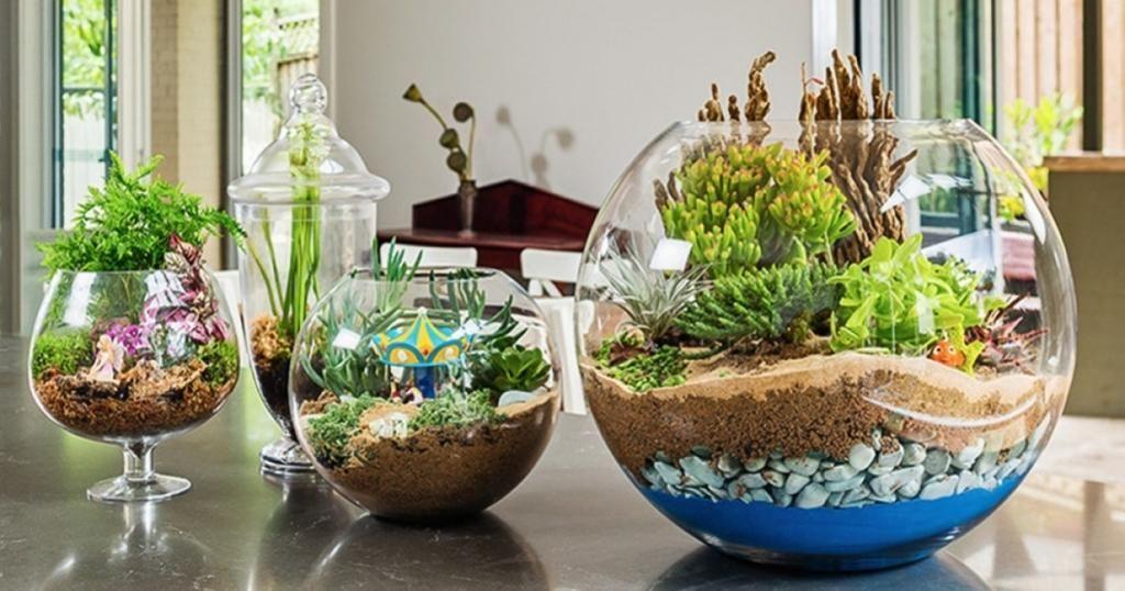 Comment réaliser un jardin miniature! Ils ajouteraient une touche de