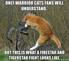 Image Result For Warrior Cat Memes Warriors Pinterest Warrior