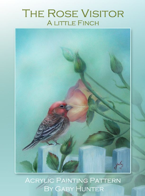 Art Apprentice Online - The Rose Visitor- Little Finch - Acrylic Painting Pattern by Artist Gaby Hunter, $9.95 (http://store.artapprenticeonline.com/the-rose-visitor-little-finch-acrylic-painting-pattern-by-artist-gaby-hunter/)