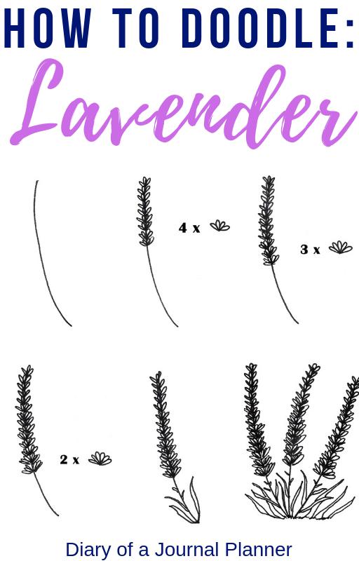 Lavender Drawing 7 Easy Steps To A Perfect Lavender Doodle Bullet Journal Topics Bullet Journal Font Bullet Journal Doodles