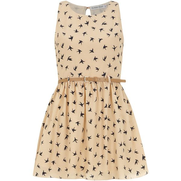Dorothy Perkins Cream belted bird Dress (£18) ❤ liked on Polyvore featuring dresses, vestidos, robes, short dresses, cream, beige cocktail dress, bird print dress, beige short dress, bird dress and round neck dress