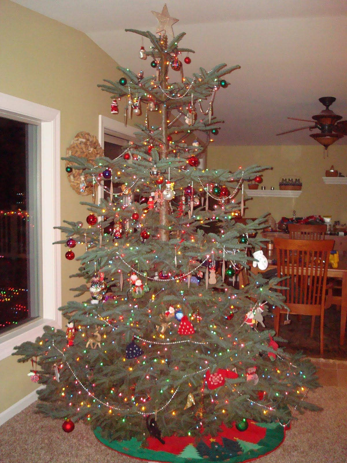 Pine Branches For Decoration Noble Fir Christmas Tree I Love The Layered Branches For