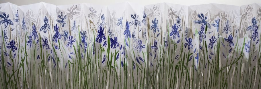 Rebecca Goodale: Making Artist's Books about Maine's Rare Plants and Animals