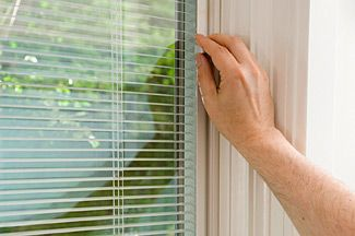 Double Pane Windows With Built In Dust Free Cat Proof Blinds