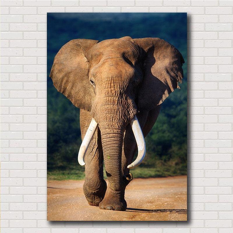 tableau sans cadre lphant - Cadre Elephant