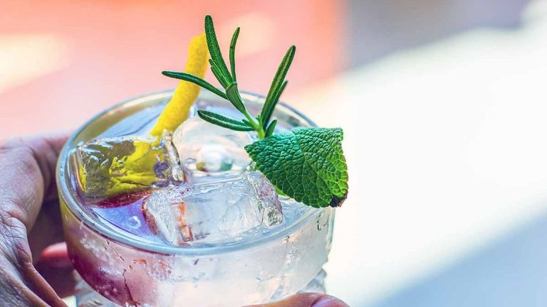 95f2ae29a226419479f0925f1a755ab9 - Ricette Gin Tonic