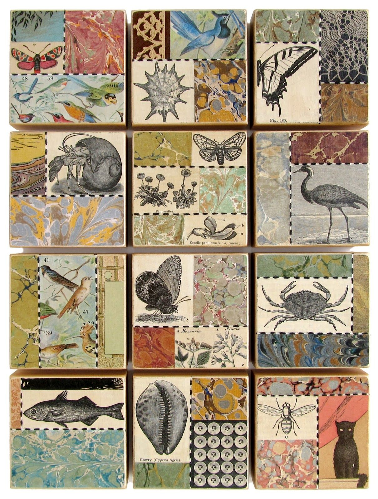 Suzanna Scott: May Art Blocks