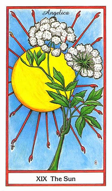 The Sun - Herbal Tarot