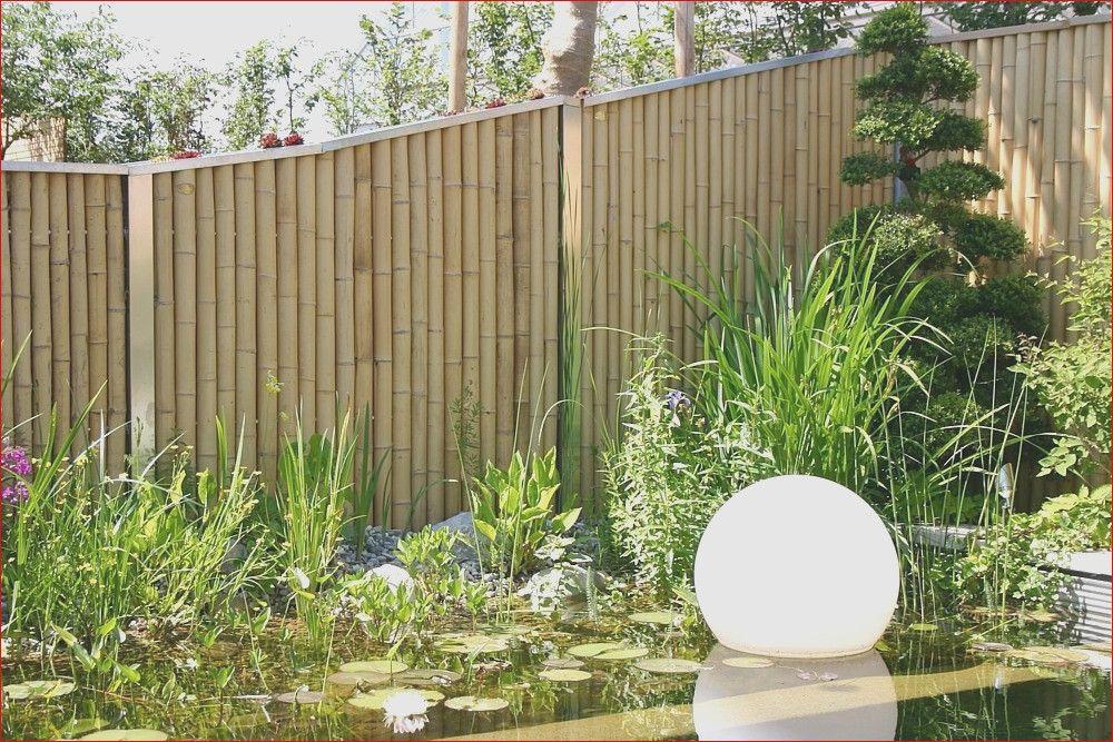 39 Diy Garten Sichtschutz Bambus Design Check More At Https Www Millionaireby25 Com Garten Sichtschutz Bambus 107066 Garten Berlin Garten Diy Garten