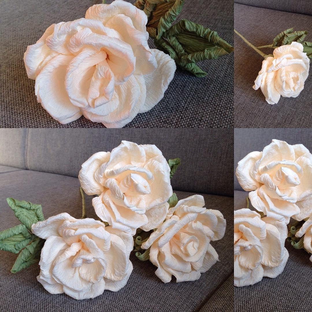 Monika Putz On Instagram Roze Z Krepiny Wloskiej Roze Rozazkrepiny Krepina Robotkireczne Ozdoby Handmade Instagram Posts Instagram Flowers