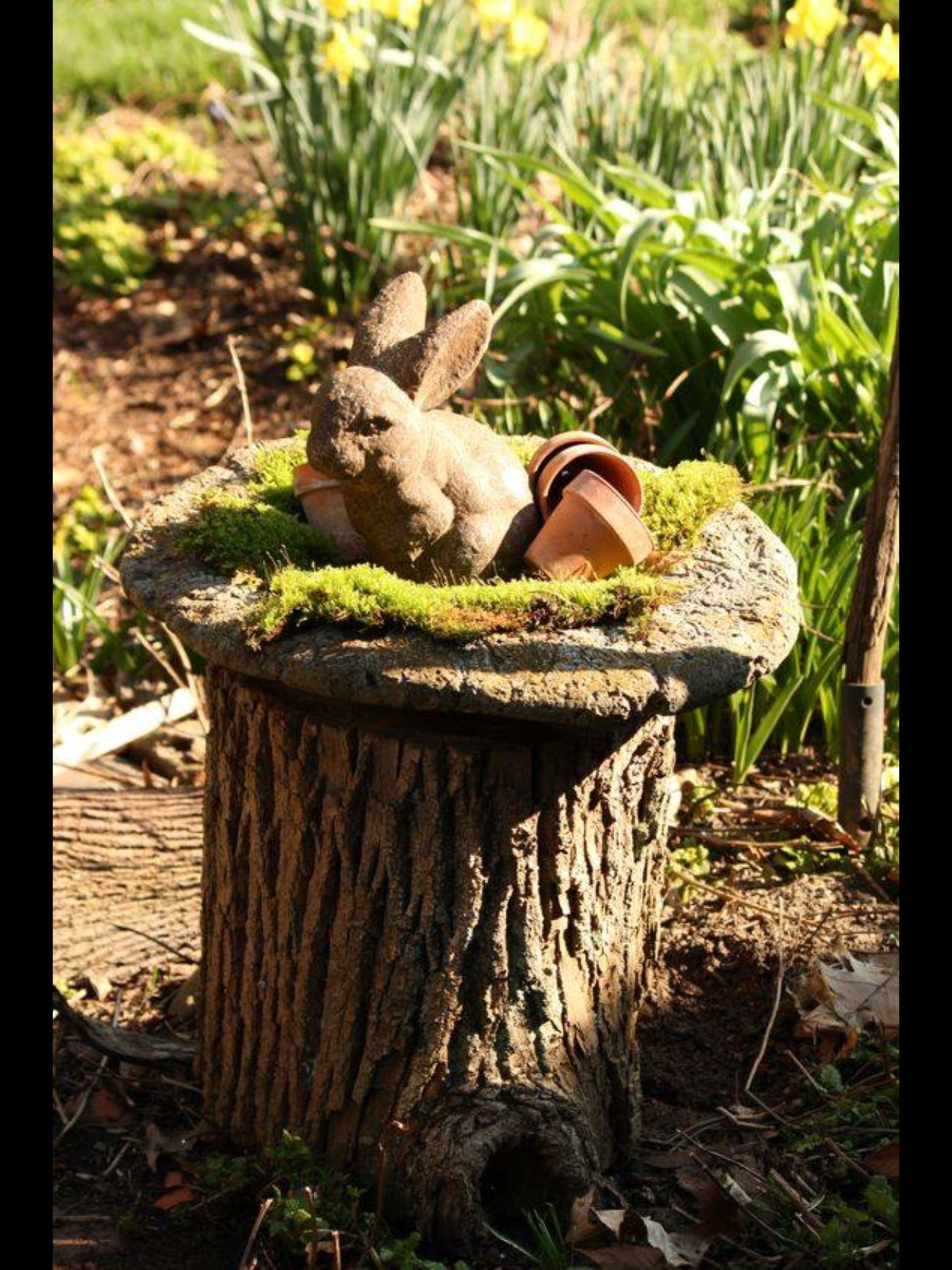 pin by jakagr on gardens pinterest fairy garden houses garden
