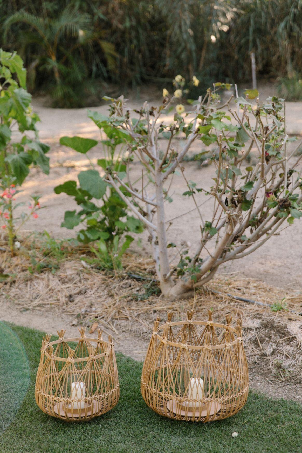 Olivia Mark Details 67 Jpg Olivia San Jose Del Cabo Marks