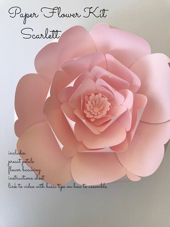 Paper flower kit do it yourself paper flower kits paper brendas paper flower kit do it yourself paper flower kits paper mightylinksfo