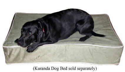 Kuranda Bed Slip Cover Kuranda Dog Beds Dog Pet Beds Covered