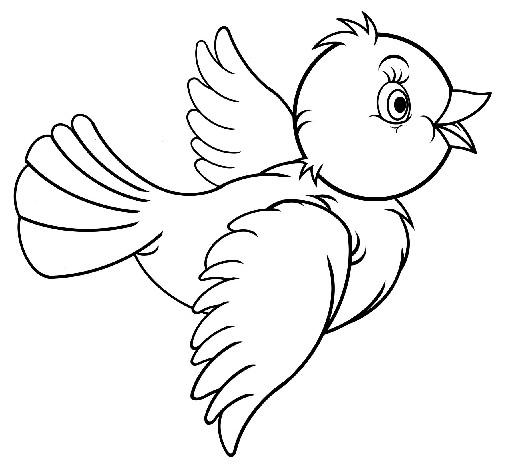 pin von renate auf vögel  bilder zum ausmalen