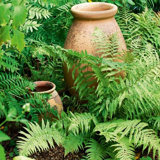 Fern Garden Ideas Country cottage garden tour garden cottage gardens and garden ideas brittish garden cottages garden with teracotta pots country cottage garden tour garden tour workwithnaturefo