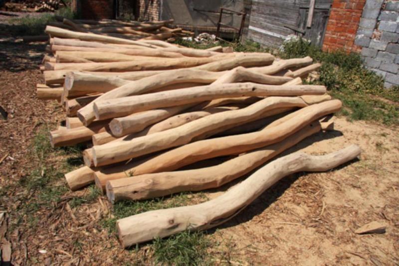 suche rundholz oder leimbinder aus l rche eiche in hessen wolfhagen heimwerken