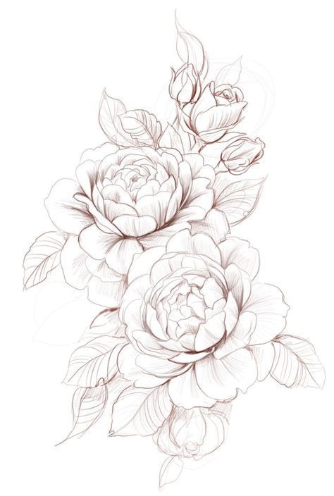 Photo of Super Drawing Tattoo Peony Roses 58+ Ideas #tattoos –