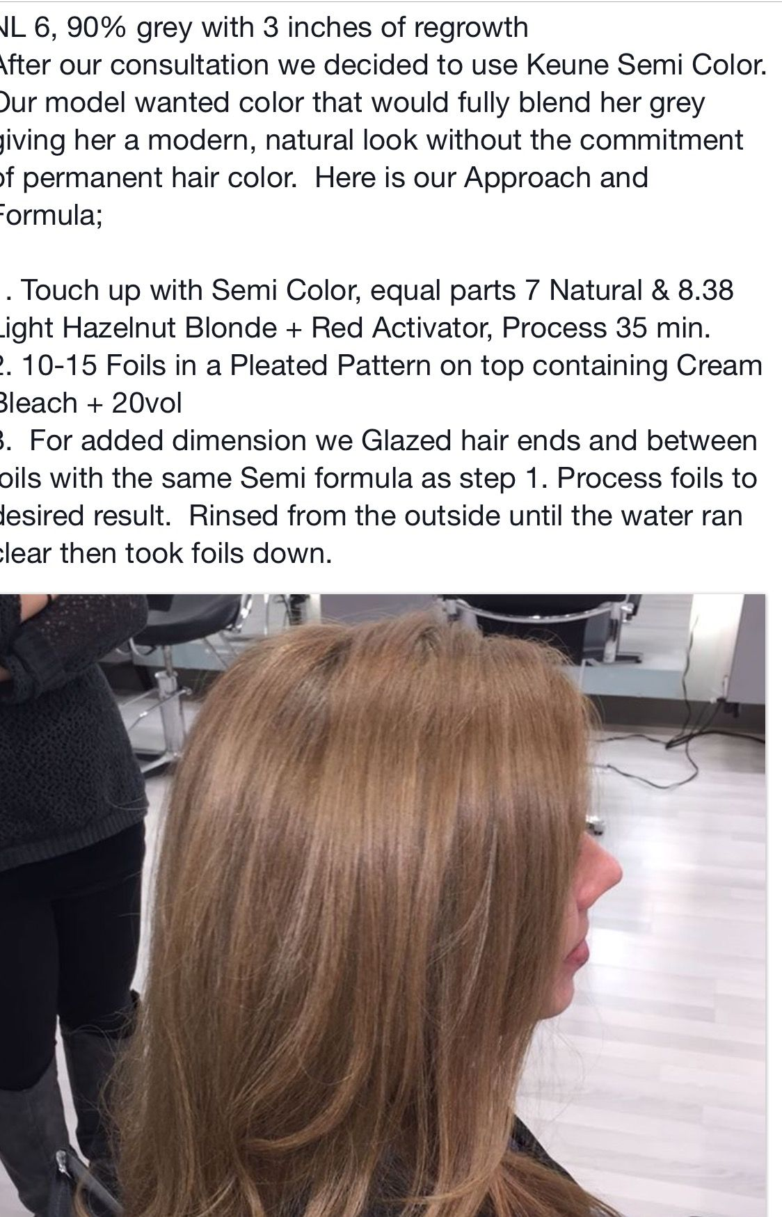Pin By George Alderete On Hair Color Formulas Step By Step How To Hair Color Formulas Hair Color Long Hair Styles