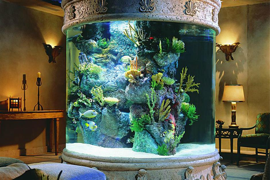 Amazing Aquariums Only Millionaires Can Afford Loveproperty Com Amazing Aquariums Aquarium Design Fish Tank Coffee Table