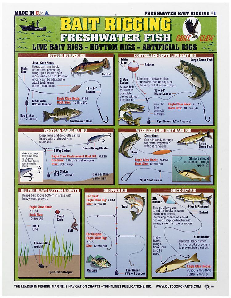Waterproof Fishing Chart - Freshwater Bait Rigging Fishing Fish