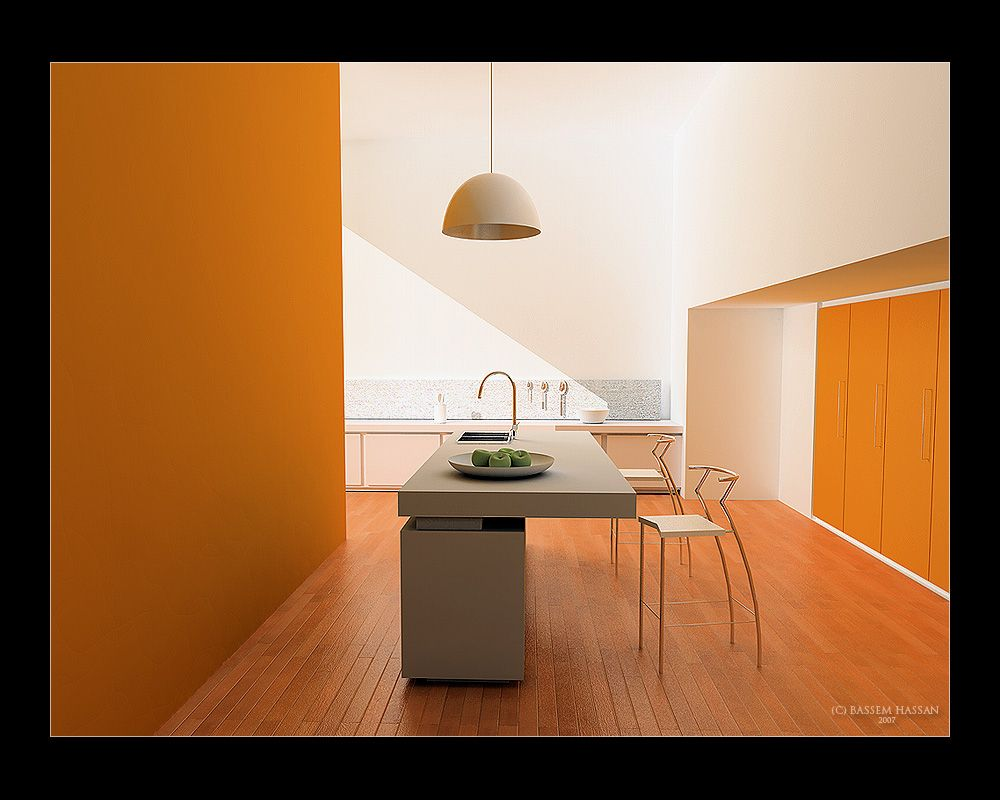 Minimalist Kitchen Designs Theme Orange
