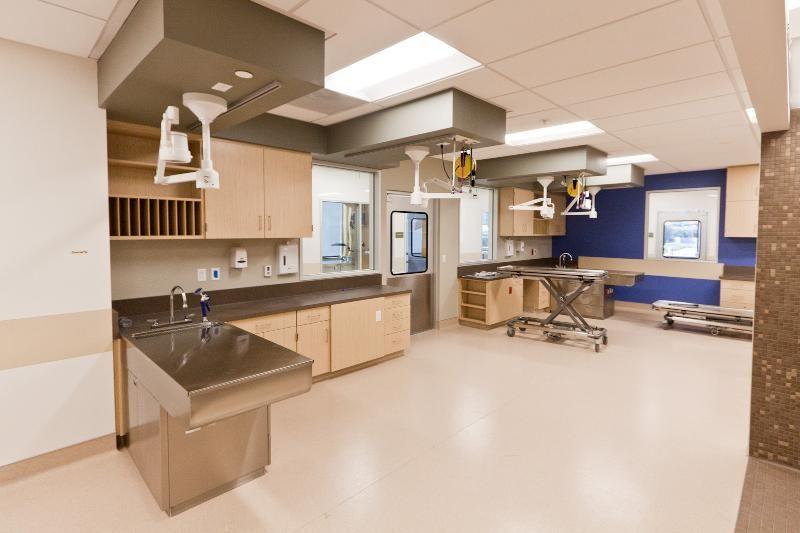 Unexpected Error Hospital Design Treatment Room Hospital Interior