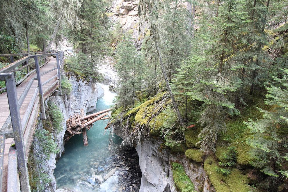 Johnston Canyon | 14 Sites In Alberta That Will Make You Feel Alive http://bzfd.it/1ouGn0L