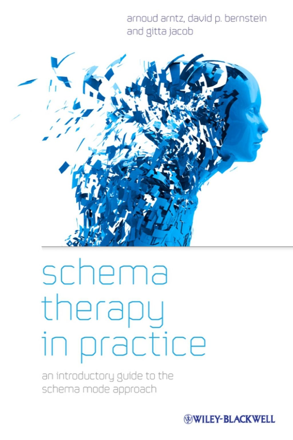 Schema Therapy In Practice An Introductory Guide To The