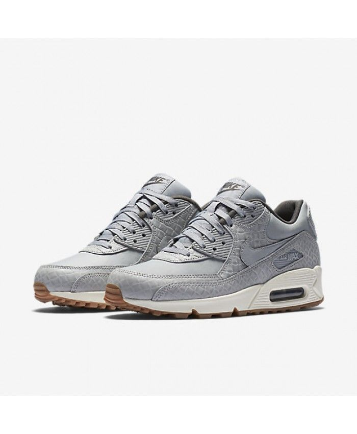 Womens Wolf Grey & Sail & Midnight Fog Nike Air Max 90