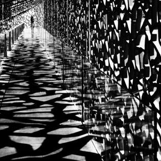 Geometrik walks - Eric Forey