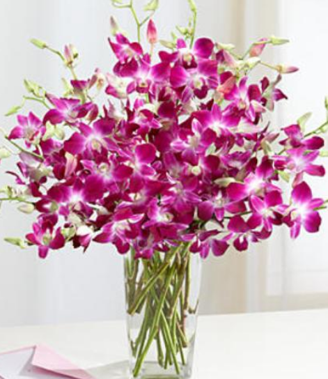 Bring A Sweet Smile Instantly On Your Loved Ones Faces With Mokara And Pink Orchids At Real Flowers We Have Dendrobium Orchids Orchid Flower Purple Orchids