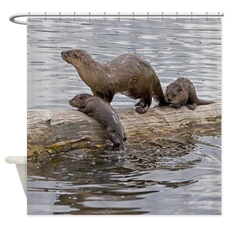 Cute River Otters Shower Curtain On CafePress