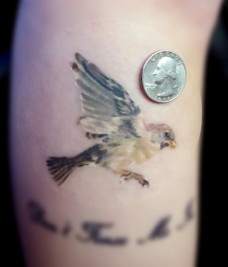 Small Sparrow Tradtional Tattoo: Traditional Sparrow Tattoo - Google Search