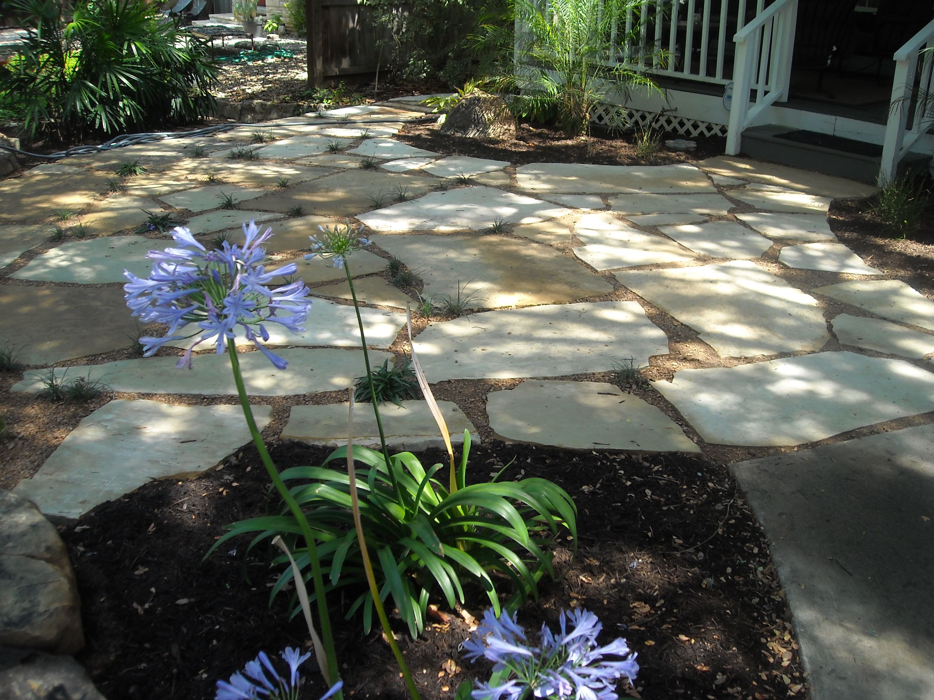 74 best landscape design austin tx images on pinterest
