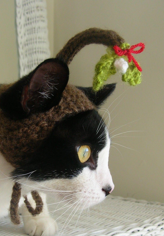 Under the Mistletoe Christmas Cat Hat Christmas cats