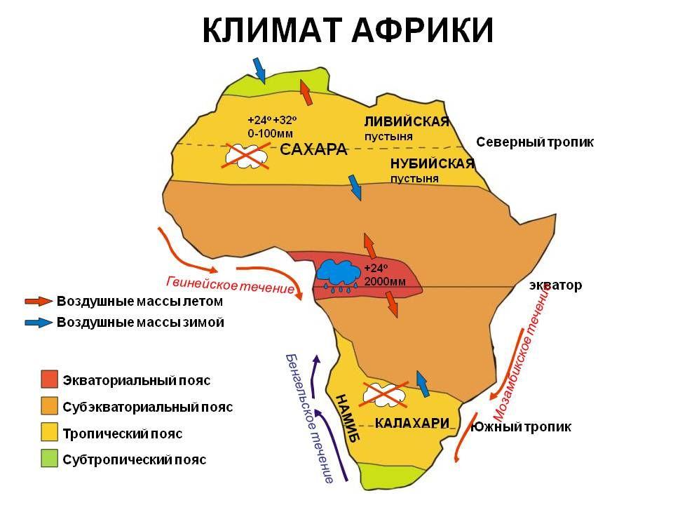 Рефераты По Географии 7 Класс